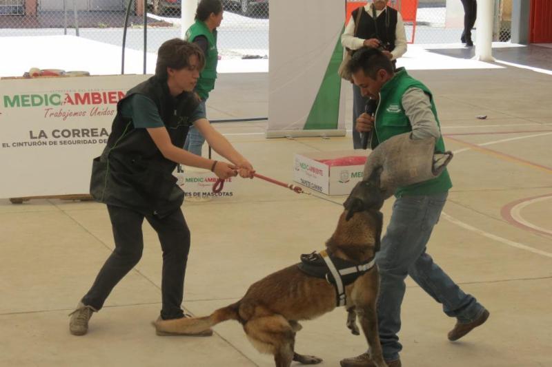 PROMUEVE GOBIERNO DEL ESTADO DERECHOS DE LOS ANIMALES