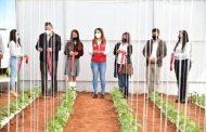 GOBIERNO ESTATAL REHABILITA ESPACIOS EDUCATIVOS DE PLANTELES DEL CECYTEZ EN FRESNILLO