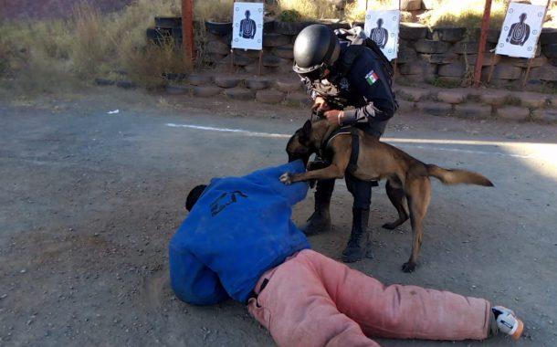 SECRETARÍA DE SEGURIDAD CAPACITA EN TÉCNICAS Y TÁCTICAS POLICIALES A ELEMENTOS DE LA UNIDAD CANINA K-9