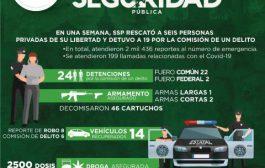 RESCATÓ SSP A SEIS PERSONAS PRIVADAS DE SU LIBERTAD Y DESMANTELÓ UN CENTRO DE EMPAQUE Y DISTRIBUCIÓN DE DROGA